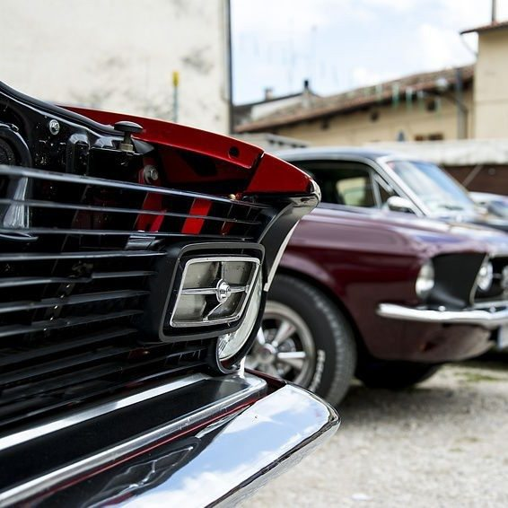 Ford Mustang 5.0 V8 Cabrio fahren - Braunschweig