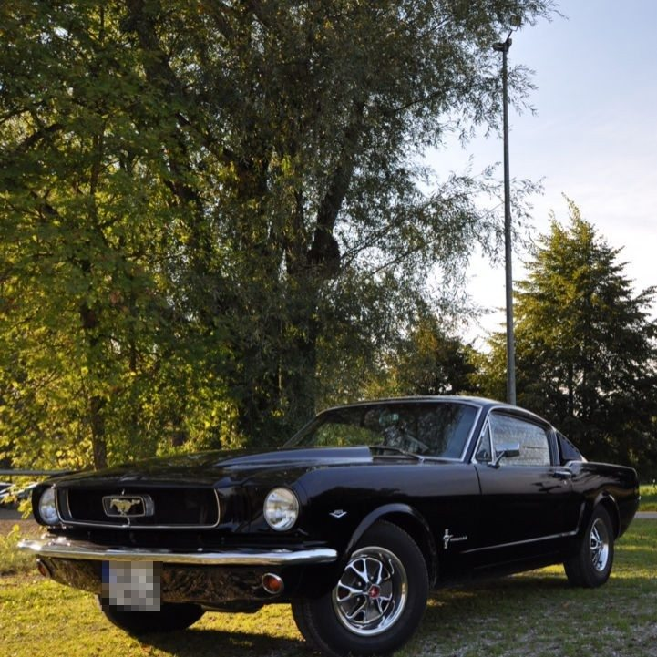 Ford Mustang fahren – Berglern