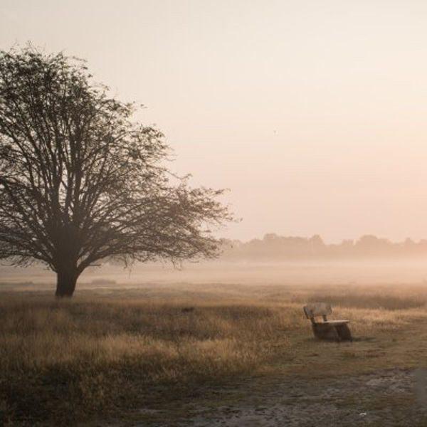 Fotokurs: Grundlagen der Fotografie I – Bonn