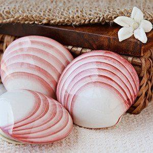 Lava Shells Massage - 60 Min. - Fürth