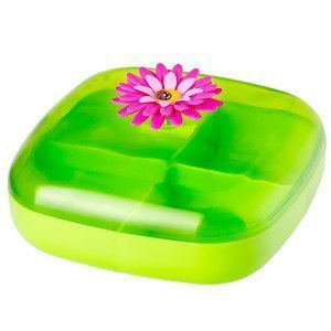 """Lunchbox """"Frühling"""""""