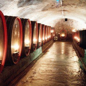 Weinseminar Oberwesel